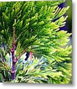 Extreme Shades Of Green Metal Print