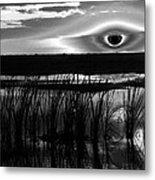 Eye Over Everglades Metal Print