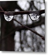 Eye See You Metal Print