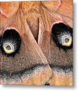 Eyes Of Deception Metal Print by Peg Urban