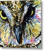 Eyes Of Owl's 13 Metal Print
