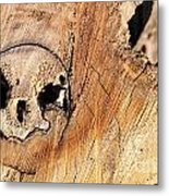 Face In The Wood Metal Print