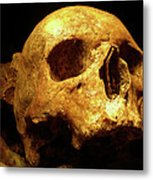 Face Of Life Lived Metal Print