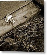 Faded Metal Print by Phil Bongiorno