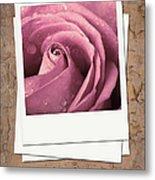 Faded Rose Photo Metal Print