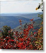 Fair View Metal Print
