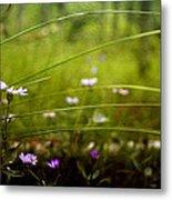 Fairy Meadow Metal Print