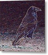 Faithful Raven Metal Print