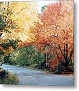 Fall 14 Country Corner Metal Print
