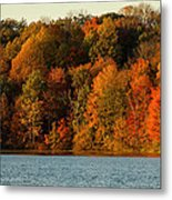 Fall Abounds Metal Print