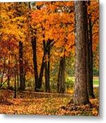Fall At Home Metal Print
