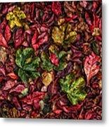 Fall Autumn Leaves Metal Print by John Farnan
