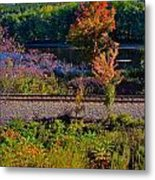 Fall By The River 5 Metal Print