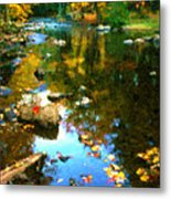 Fall Color At The River Metal Print by Suni Roveto