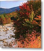 Fall Color In The White Mountains Metal Print