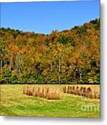 Fall Color Randolph County West Virginia Metal Print
