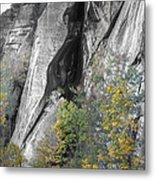 Fall Colors Chimney Rock State Park Metal Print