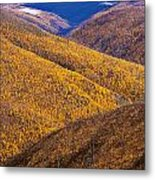 Fall Colours Along Top Of The World Metal Print