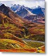 Fall Colours And Alaska Range Denali Photograph By Yves
