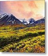 Fall Colours And Auriol Range Metal Print