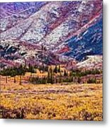 Fall Colours In Ogilvie Mountains Metal Print