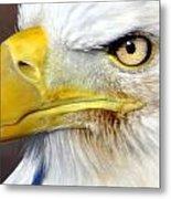 Fall Eagle 3 Metal Print