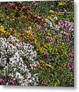 Fall Flower Garden Metal Print