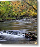 Fall Forward Metal Print