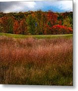 Fall Golf Metal Print