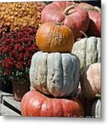 Fall Harvest Colorful Gourds 7968 Metal Print