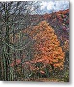 Fall Hiking Near Mountain Lake Metal Print