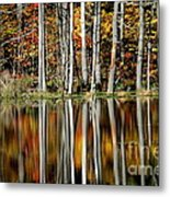 Fall In New York Metal Print