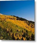 fall in Ruidoso Metal Print
