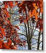 Fall In The City 1 Metal Print