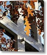 Fall In The City 3 Metal Print