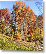 Fall In The Foothills Metal Print