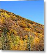 Fall In The Mountains Metal Print