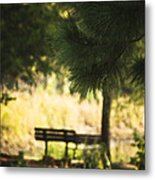 Fall In The Pines Metal Print