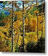 Fall In The Sierras Metal Print by Helen Carson
