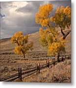 Fall In Yellowstone Metal Print
