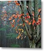 Fall In Your Face Metal Print