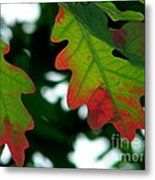 Fall L Eaves Metal Print