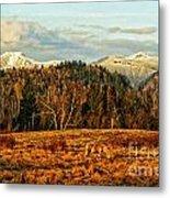 Fall Landscape-hdr Metal Print