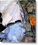 Fall Leaf Abstract Metal Print