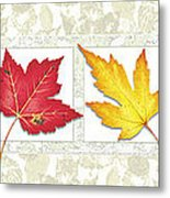Fall Leaf Panel Metal Print