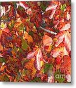 Fall Leaves - Digital Art Metal Print