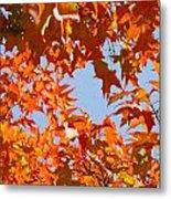 Fall Leaves Art Prints Autumn Red Orange Leaves Blue Sky Metal Print
