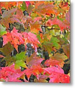 Fall Leaves Filtered Metal Print