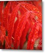 Fall Leaves Red 3 Metal Print