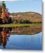 Fall On Lake Lila Metal Print